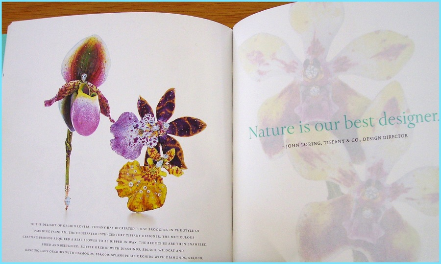 2007/2008 Tiffany catalog with David Freda's orchid brooches.